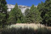 Una montaña de california — Foto de Stock