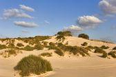 Sandy dunes. — Stock Photo