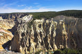 Canyon yellowstone nationalpark — Stockfoto