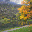 Autumn on lake — Stock Photo