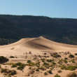 Reserve Coral Pink sand dunes in the U.S. — Stock Photo #6659469