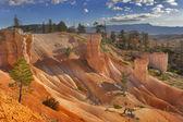 мягкие песчаного склона — Стоковое фото