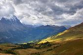 Autumn Alpine meadow — Foto Stock