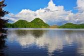 See und herbst wald — Stockfoto