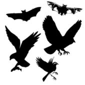 Vector illustration of the birds and bats on white background — Vecteur