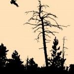 Stare drzewo suche — Wektor stockowy