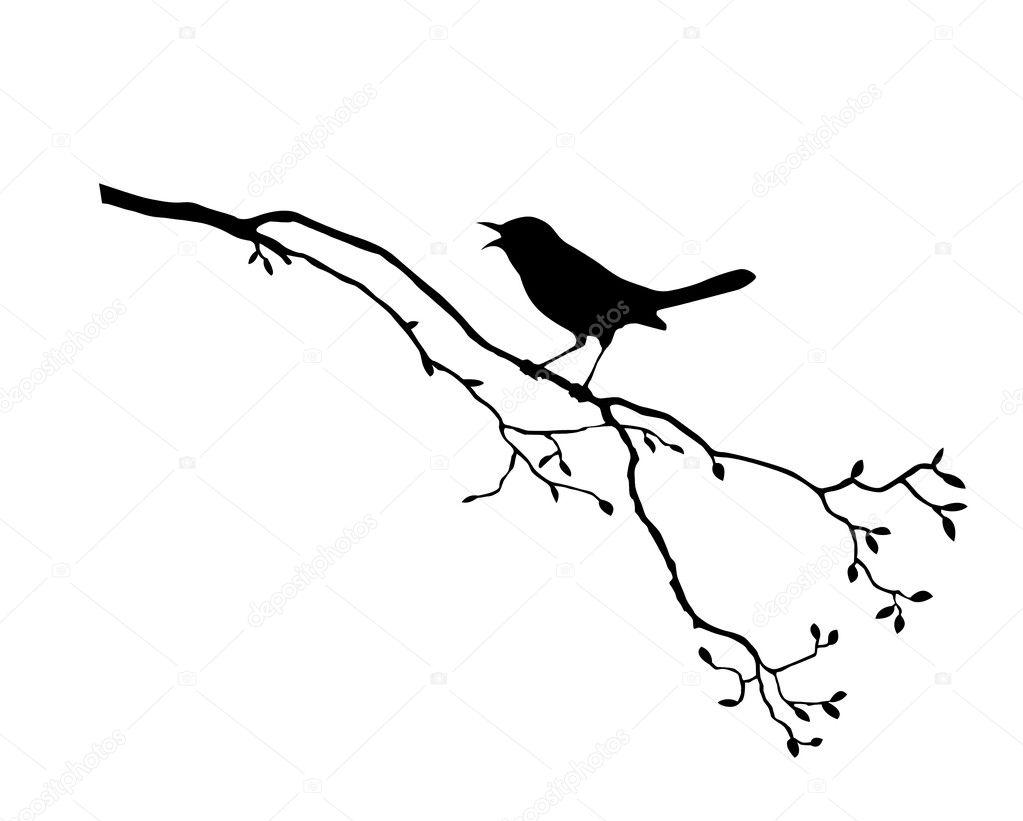 Bird on branch ... Sparrow Stencil
