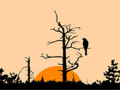 Silhouette of the bird — Stockvector