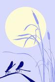 Dragonflies on herb — Stock Vector