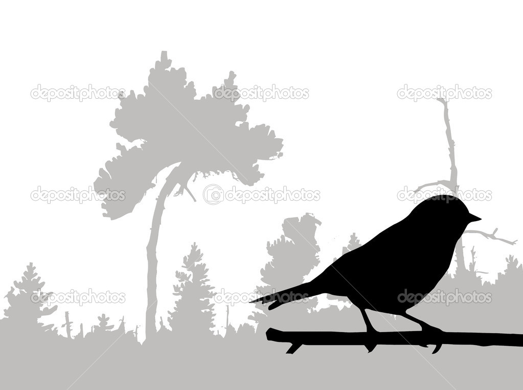 Silhouette of the bird on branch — Stock Vector #6535132