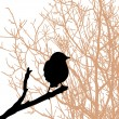 bird on branch — Stock Vector