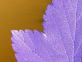 Abstract sheet tree — Stock Photo