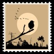 Vector silhouette of the birds on postage stamps — Stockvektor