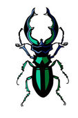 Vector silhouette of the bug on white background — Stock Vector