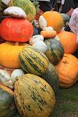 Vegetables on rural market — Stock Photo