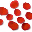 Rose petals - 