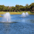 Fountain in the artificial pond. — Stock Photo