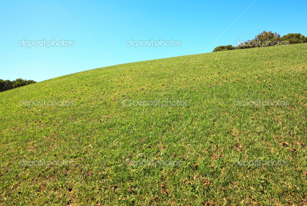 Hill on the golf course.  Stock Photo #6682993