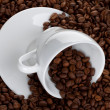 Coffee cup with beans — Stock Photo