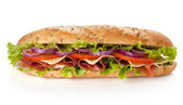 Long sandwich — Stock Photo