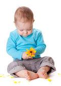 Kleine baby spelen met gele bloem — Stockfoto