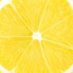 Macro food collection - Lemon slice — Stock Photo #5966225