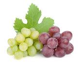 白色和红色的葡萄 — 图库照片