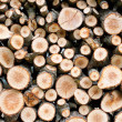 Stock Photo: Background of dry chopped firewood logs stacked up in a pile