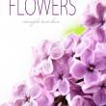 Spring Lilac — Stock Photo #5594791