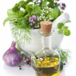 Healing herbs — Stock Photo #6262097