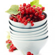 Ripe red currant berries — 图库照片