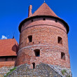 Stock Photo: Trakai castle, Lithuania