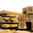 Pine wood logs — Stock Photo