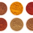 Indian spices — Stock Photo #5842874