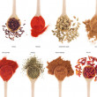 Spices collection on spoons - Stock Photo