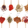 Spices collection on spoons - Foto Stock