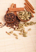 Cardamom pods and cloves — Stock Photo