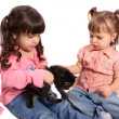 Stock Photo: Girls holding kitten