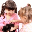 Girls holding kitten — Stock Photo