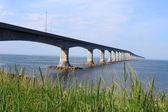 Confederation bridge till prince edward island — Stockfoto
