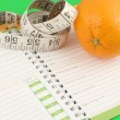 Stockfoto: Diet journal