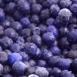 Frozen blueberries — Stock Photo #6192782