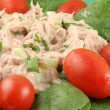 Tuna salad — Stock Photo #6193397