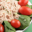 Tuna salad — Stock Photo #6193408