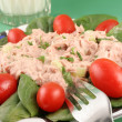 Tuna salad — Stock Photo #6193429