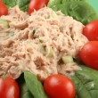 Tuna salad — Stock Photo #6193445