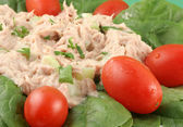 Tuna salad — Foto de Stock