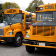 School buses — Stock Photo #6312969