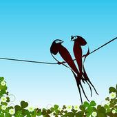 燕子背景 — 图库照片