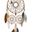 Dream catcher — Vector de stock #6135426
